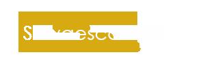 Sillas Salvaescaleras Valencia Logo